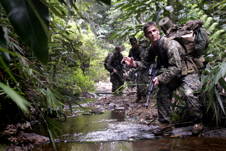 Rifleman Lance Cpl. John Jones with Combat Assault Company, 3rd Marine Regiment, 3rd Marine Division, signals to fellow Marines as he patrols with Malaysian Army Rangers in Malaysia during Cooperation Afloat Readiness and Training 2008. CARAT 2008 is a series of bilateral exercises between U.S. armed forces and six Southeast Asian countries.